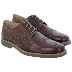 Anatomic Gel Anatomic Gel Tucano Shoes